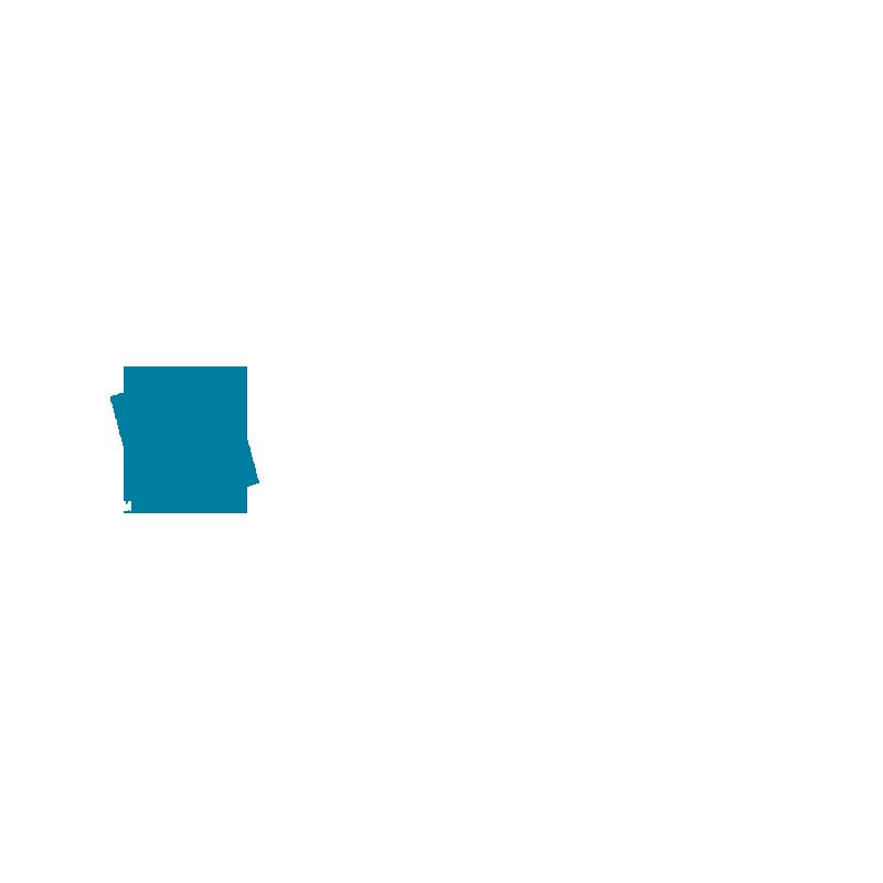 GIS Partners